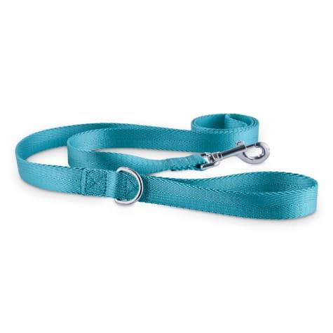 Good2Go Turquoise Nylon Dog Leash, 1