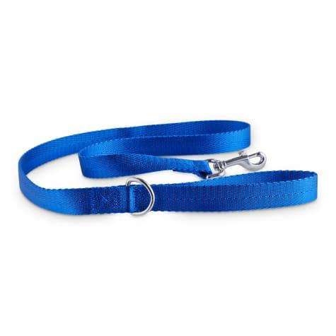 Good2Go Blue Nylon Dog Leash, 1
