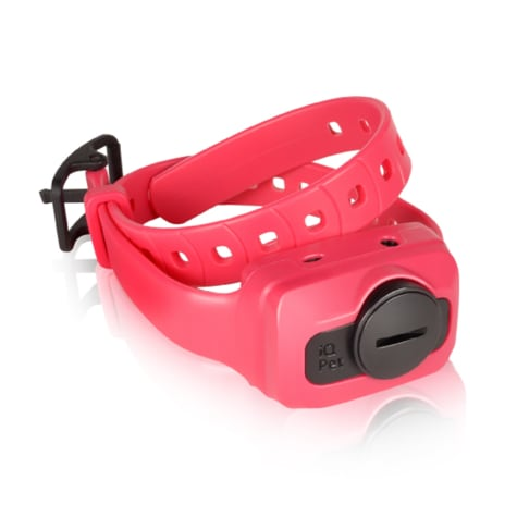 Dogtra iQ CLiQ Additional Receiver in Pink