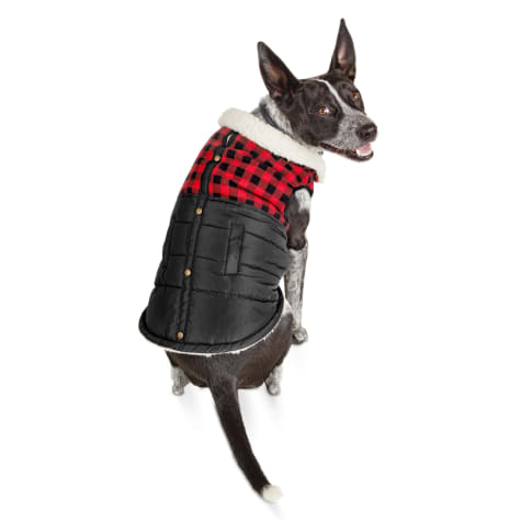 Bond & Co. Faux-Shearling-Lined Buffalo Check Flannel Dog Coat