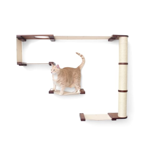 CatastrophiCreations The Cat Mod Climb Track Hammocks With Sisal Pole for Cats in English Chestnut