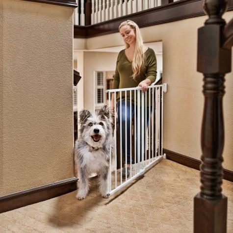 You & Me Stairway Walk-Thru Pet Gate