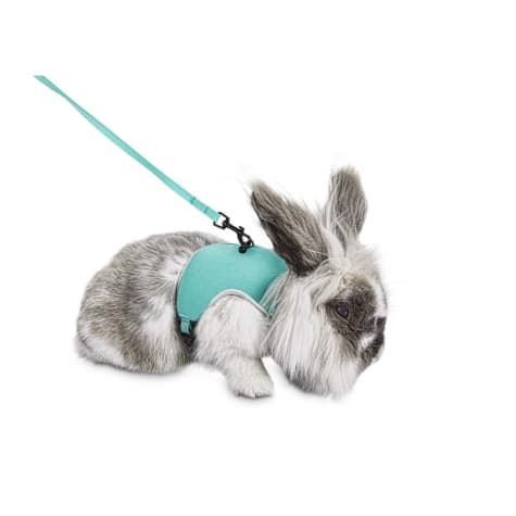 You & Me Aqua Small Animal Harness and Leash Set