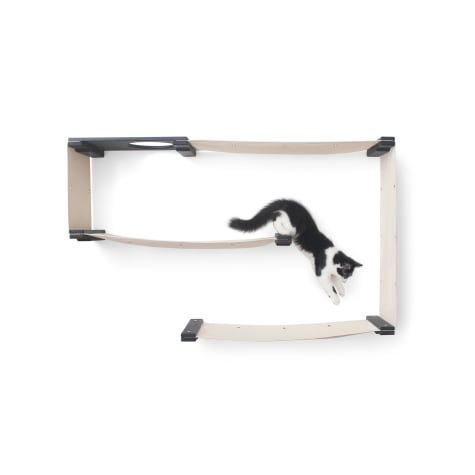 CatastrophiCreations The Cat Mod Maze Lounging Hammocks for Cats in Onyx