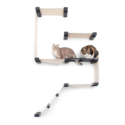 CatastrophiCreations The Cat Mod Fort Lounging Hammocks for Cats in Onyx