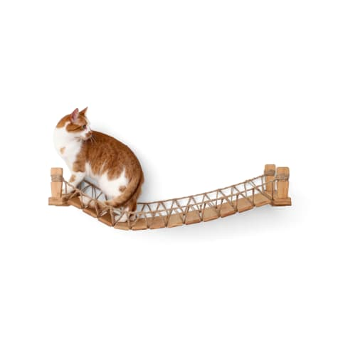 CatastrophiCreations The Cat Mod Bridge Lounge Hammocks for Cats in Natural