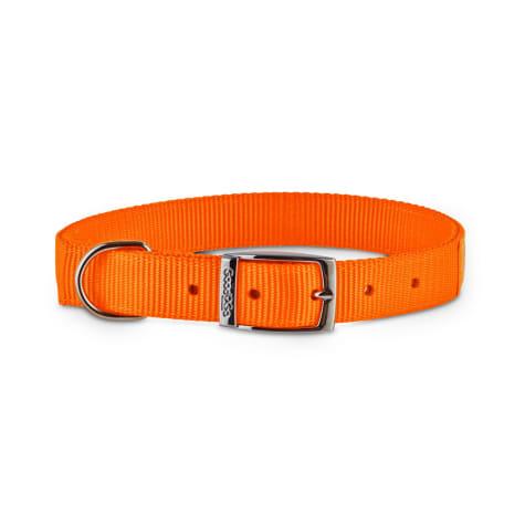 Good2Go Bright Orange Reflective Dog Collars