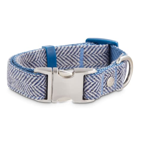 Bond & Co. Blue Herringbone Snap Buckle Dog Collar