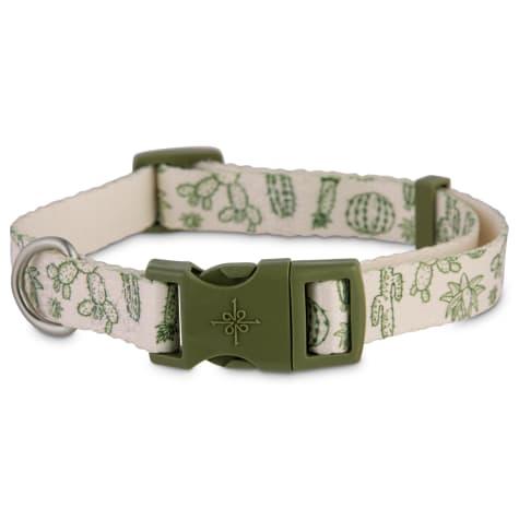Good2Go Cactus-Print Dog Collar
