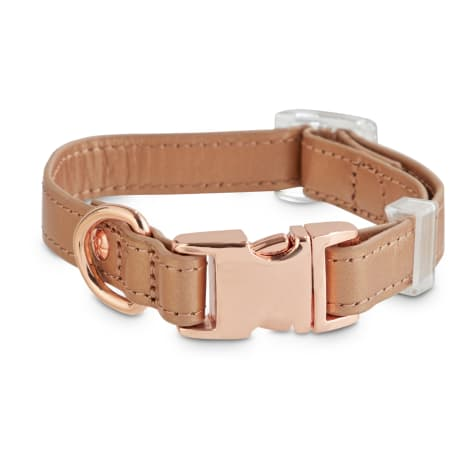 Bond & Co. Rose Gold Leather Dog Collar