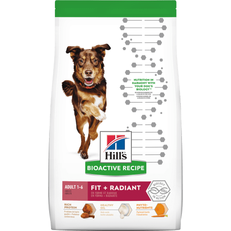 Hill's Bioactive Recipe Fit + Radiant Chicken & Barley Adult Dry Dog Food