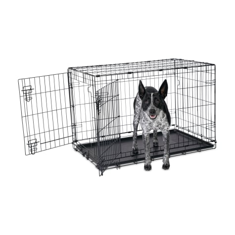 Animaze 2-Door Folding Dog Crate