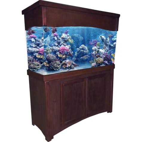 R&J Enterprises 48X13 Cherry Calypso Birch Cabinet & Canopy Combo