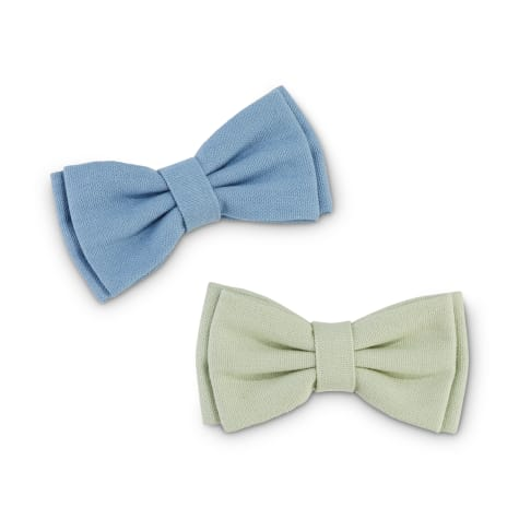 Serenity Mint Green and Blue Dog Bowtie Set