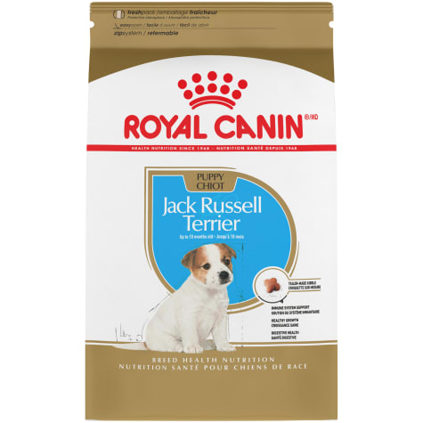 Royal Canin Breed Health Nutrition Jack Russell Terrier Puppy Dry Dog Food