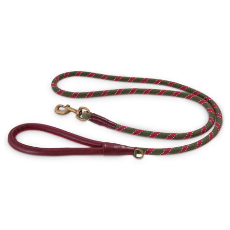 Reddy Olive Rope Dog Leash