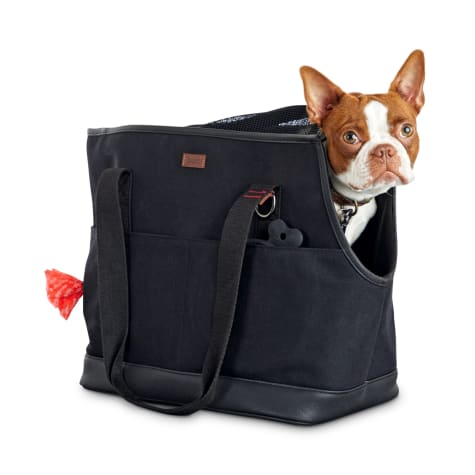 Reddy Black Canvas Dog Carrier Tote