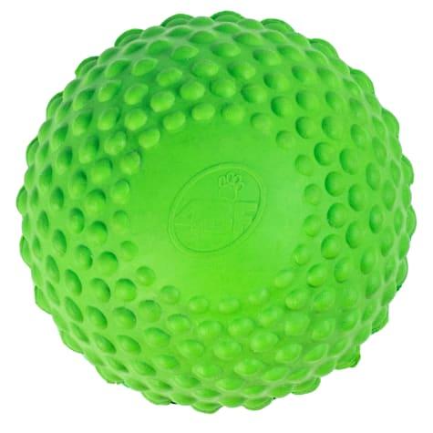 4BF Bumpy Ball Green Dog Toy