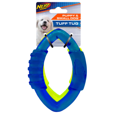 Nerf Translucent TPR Football Ring Blue and Green Dog Toy