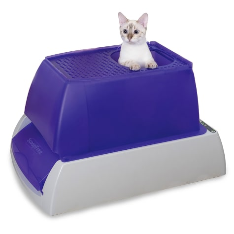 ScoopFree by PetSafe Top-Entry Ultra Self-Cleaning Cat Litter Box with Automatic Disposable Tray