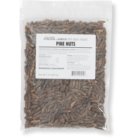 Drs. Foster and Smith Pine Nuts for Birds