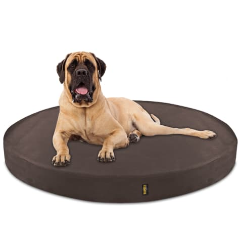 Kopeks Orthopedic Memory Foam Round Brown Bed for Dogs
