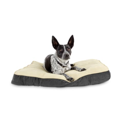 Animaze Gray Lounger Dog Bed