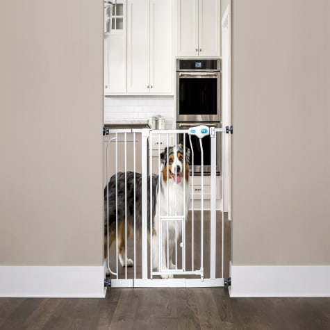 Carlson Pet Products Extra Wide Walk-Thru Pet Gate with Door