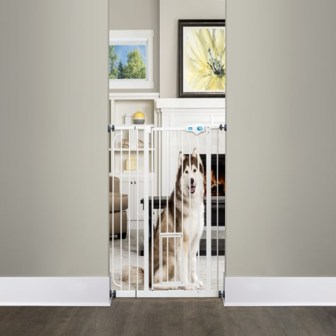 Carlson Pet Products Extra Tall-Thru Pet Gate with Door