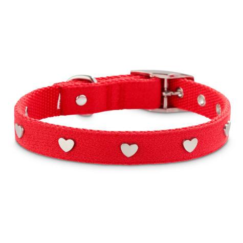 Bond & Co. Heart to Heart Stud Dog Collar