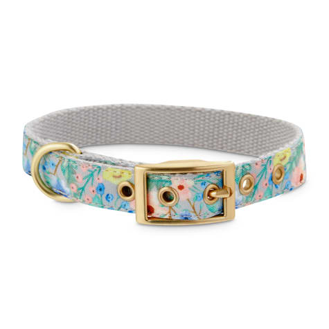 Bond & Co. Watercolor Garden Dog Collar