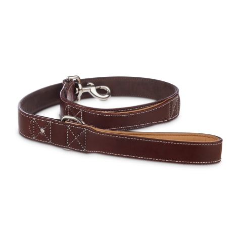 Bond & Co. Mahogany Leather Leash for Big Dogs