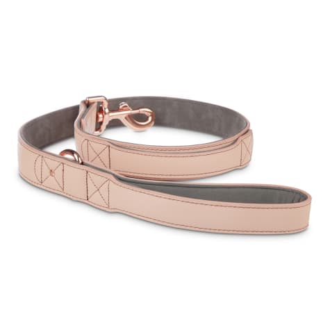 Bond & Co. Rose Gold and Leather Leash for Big Dogs