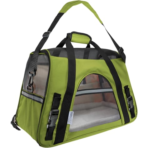 Paws & Pals Green Pet Carrier