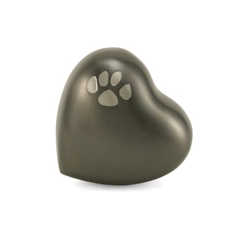 A Pet's Life Personalized Brass Paw Print Cremation Urn, Gray, Pet Memorial for Pet Weight Up to 3 lbs.