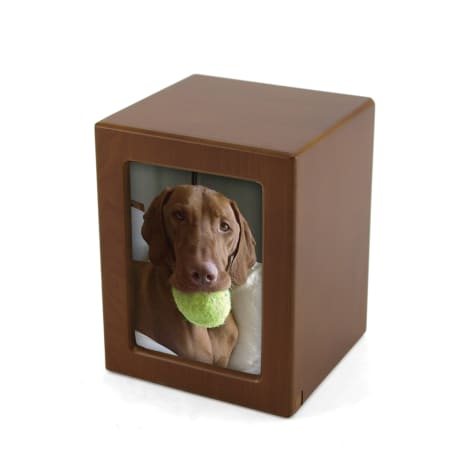 A Pet's Life Personalized Large Photo Frame Cremation Urn, Honeynut, Pet Memorial for Pet Weight Up to 195 lbs.