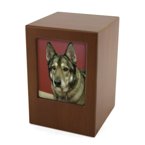 A Pet's Life Personalized X-Large Photo Frame Cremation Urn, Honeynut, Pet Memorial for Pet Weight Up to 195 lbs.
