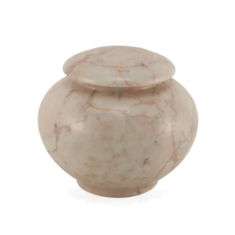 A Pet's Life Personalized Desert Sand Cremation Urn, Pet Memorial for Pet Weight Up to 40 lbs.