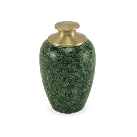 A Pet's Life Personalized High Gloss Cremation Urn, Green, Pet Memorial for Pet Weight Up to 20 lbs.