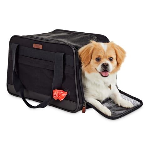 Reddy Black Cotton Canvas Travel Pet Carrier