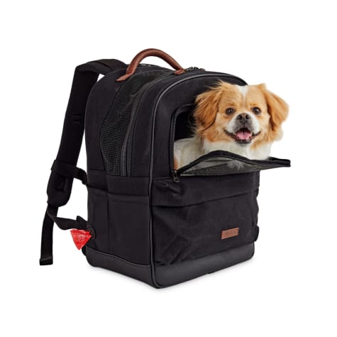 Reddy Black Cotton Canvas Pet Carrier Backpack