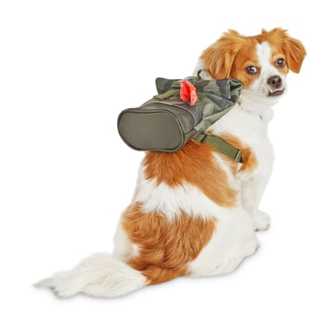 Reddy Camo Canvas Dog Backpack
