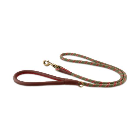 Reddy Olive Bi-Color Rope Dog Leash