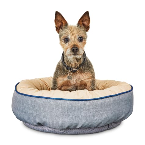 You & Me Bloom Medallion Round Pet Bed