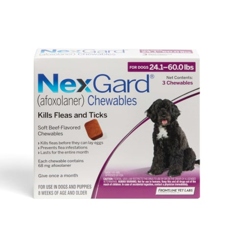 NexGard Chewables - Purple for Dogs 24.1 to 60 lbs.