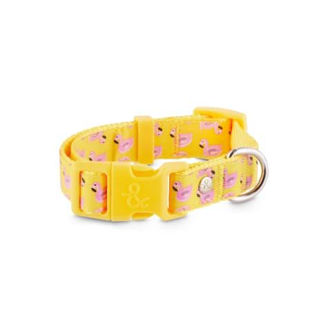 Bond & Co. Flamingo Floatie Dog Collar