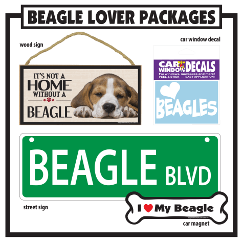 Imagine This Beagle Gift Package