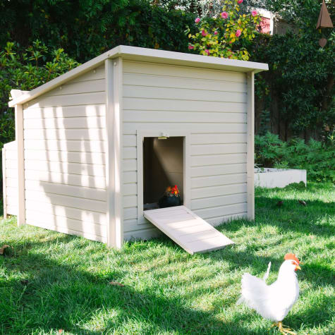 New Age Pet ecoFLEX Jumbo Fontana Chicken Barn in Tan