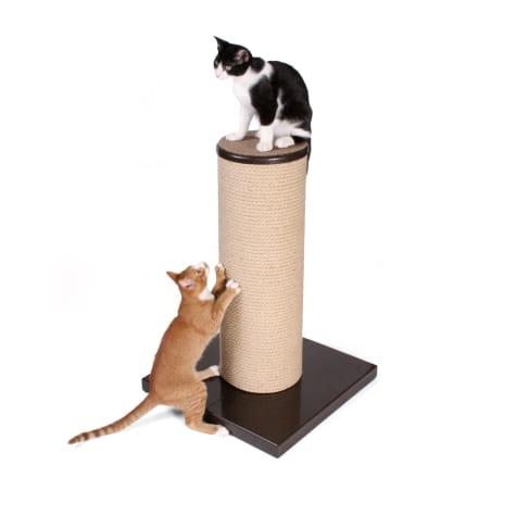 Hauspanther Max Scratch by Primetime Petz, in Cat Scratchers