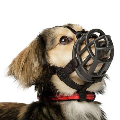Baskerville Ultra Black Muzzle For Dogs